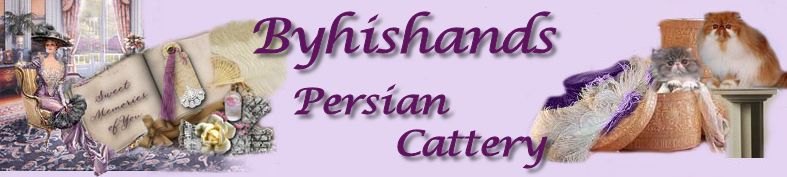 Byhishands Persian Cattery - Persian kittens for sale